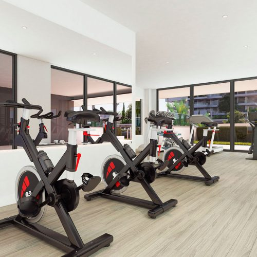 Halia_interior_gym